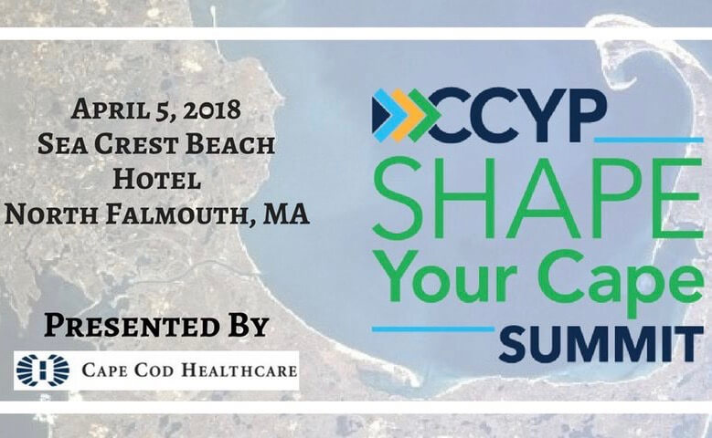 Cape Cod Young Professionals Shape Your Cape Summit